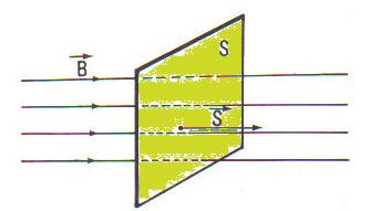 linea de fuerza magnetica: