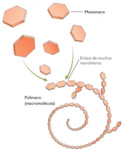 Polimerización